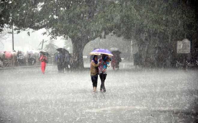 હવામાન વિભાગે કરી આગામી 48 કલાકમાં કમોસમી વરસાદની આગાહી, ખેડૂતોની ચિંતામાં થયોવધારો